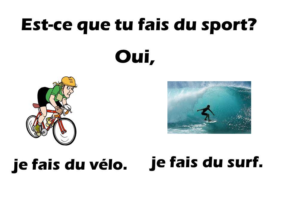 Est-ce que tu fais du sport? Non, je ne fais pas de sport.