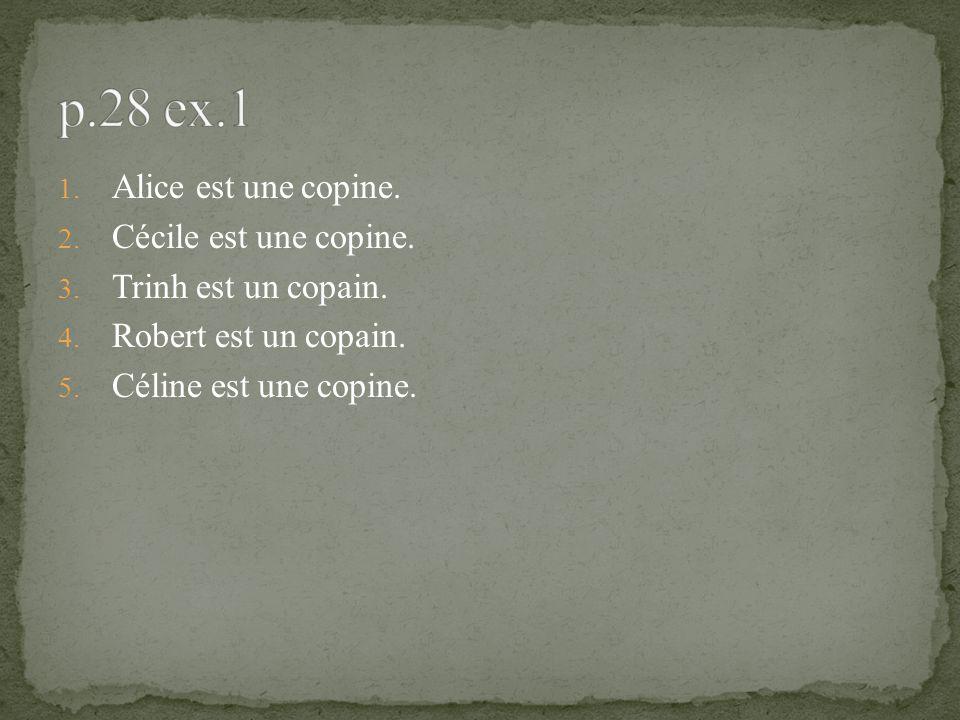 1. Alice est une copine. 2. Cécile est une copine. 3. Trinh est un copain. 4. Robert est un copain. 5. Céline est une copine.