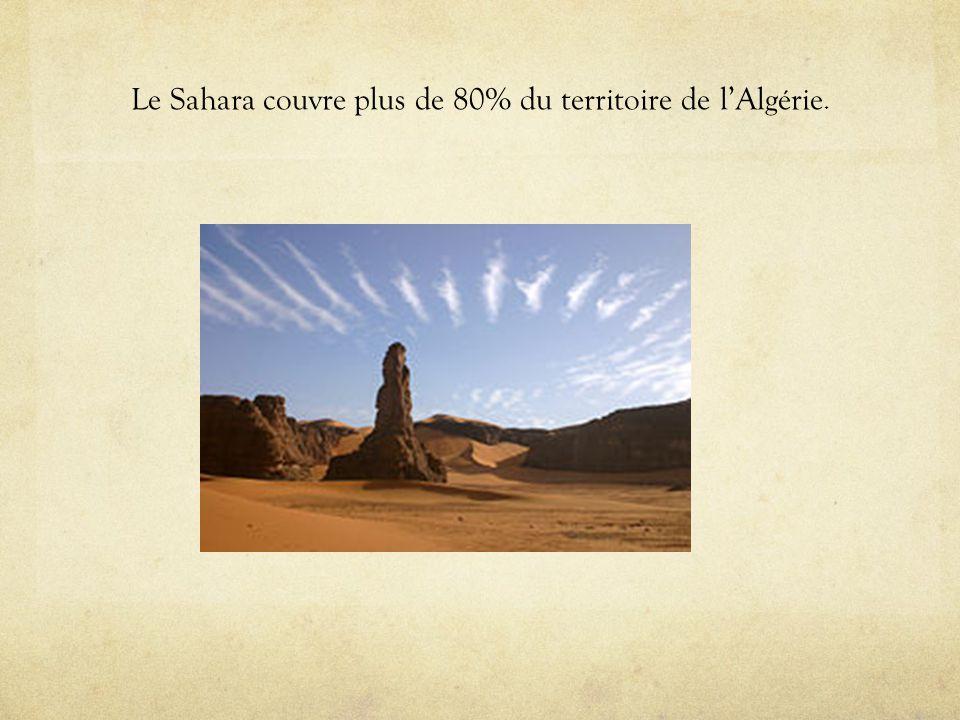 Le Sahara couvre plus de 80% du territoire de lAlgérie.