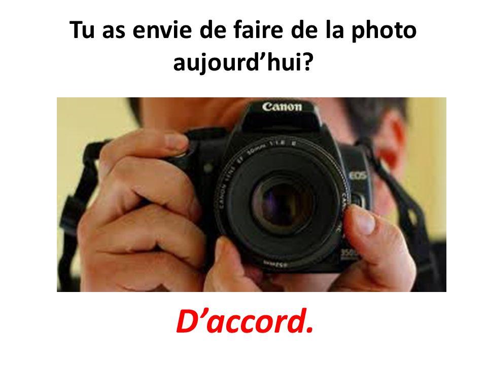 Tu as envie de faire de la photo aujourdhui? Daccord.