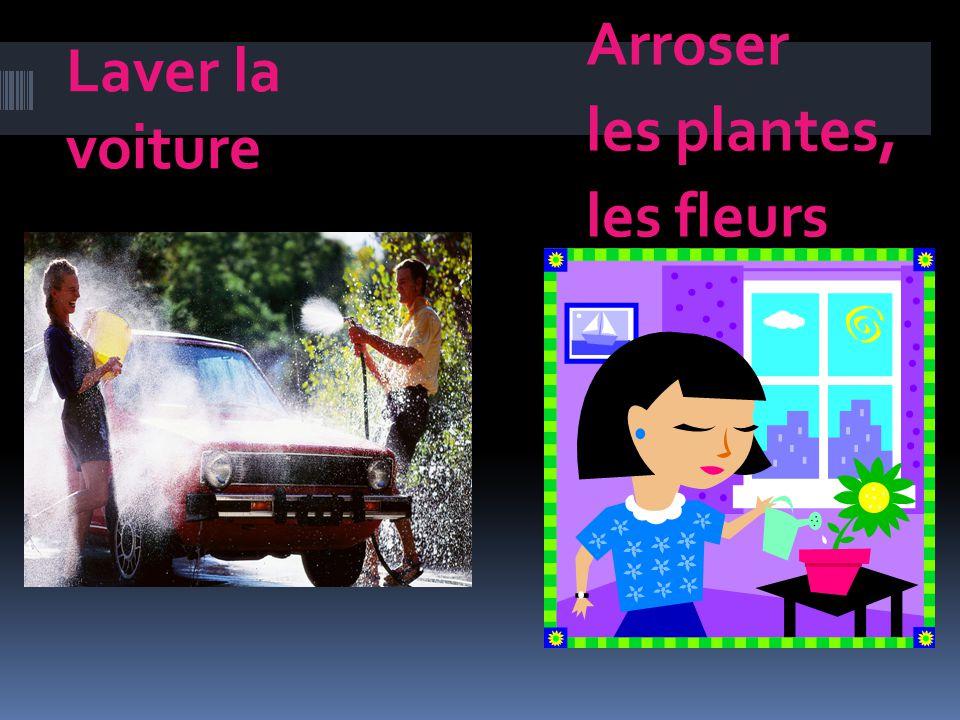 Laver la voiture Arroser les plantes, les fleurs