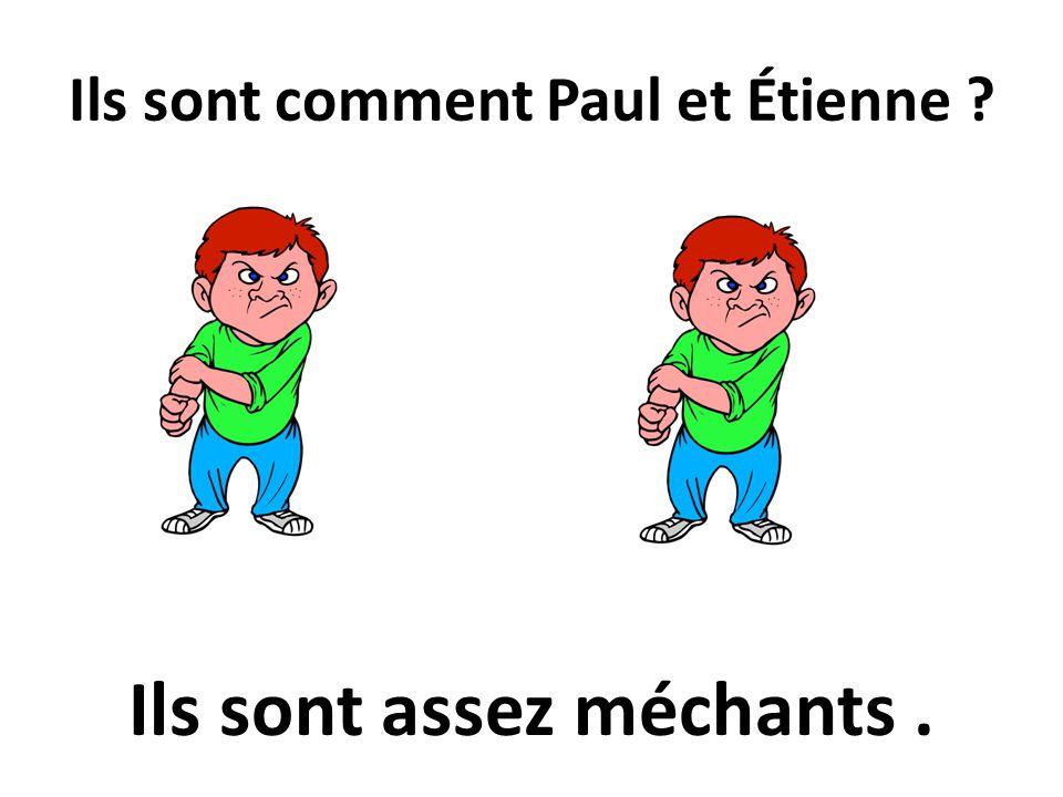 Ils sont comment Paul et Étienne ? Ils sont assez méchants.