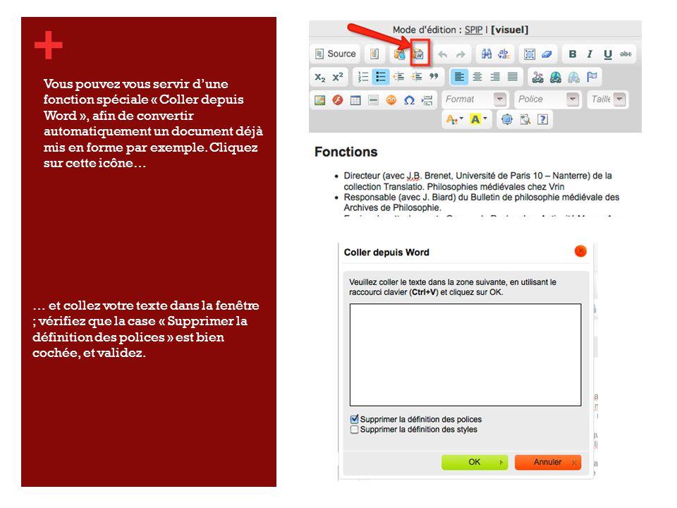 + … et collez votre texte dans la fenêtre ; vérifiez que la case « Supprimer la définition des polices » est bien cochée, et validez.
