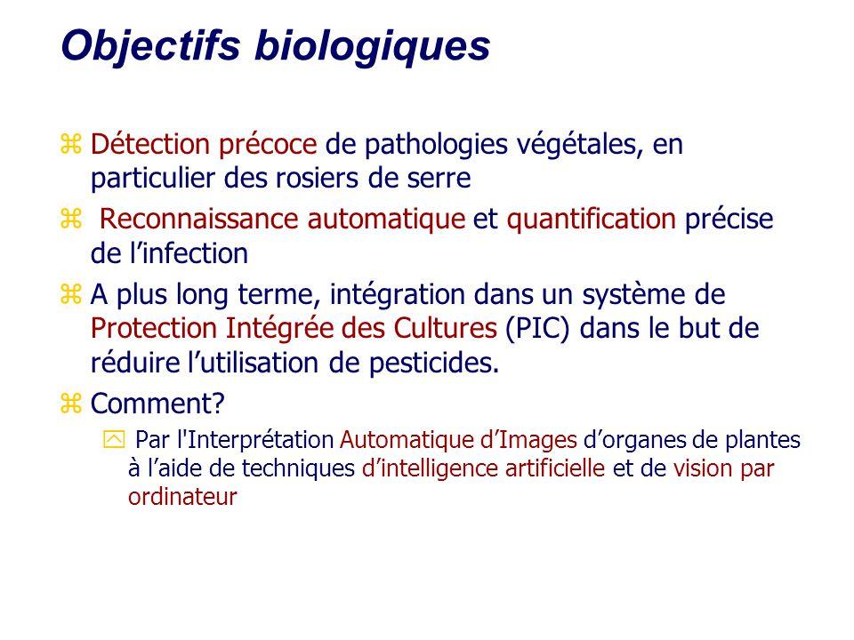 Objectifs biologiques zDétection précoce de pathologies végétales, en particulier des rosiers de serre z Reconnaissance automatique et quantification