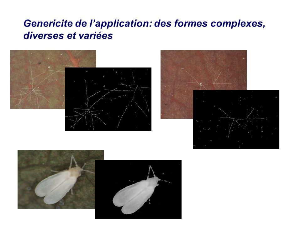 Genericite de lapplication: des formes complexes, diverses et variées