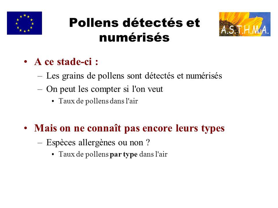 Pollens détectés et numérisés A ce stade-ci : –Les grains de pollens sont détectés et numérisés –On peut les compter si l on veut Taux de pollens dans l air Mais on ne connaît pas encore leurs types –Espèces allergènes ou non .