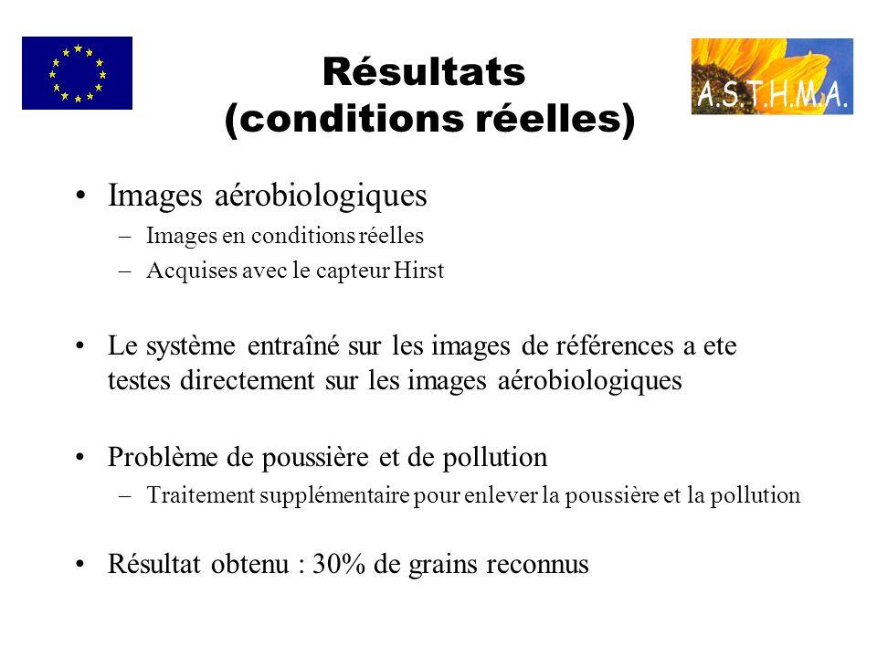 Résultats (conditions réelles) Images aérobiologiques –Images en conditions réelles –Acquises avec le capteur Hirst Le système entraîné sur les images