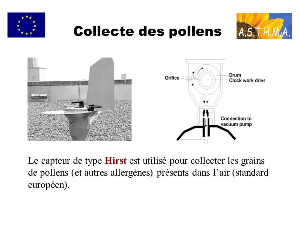 Collecte des pollens Le capteur de type Hirst est utilisé pour collecter les grains de pollens (et autres allergènes) présents dans lair (standard eur