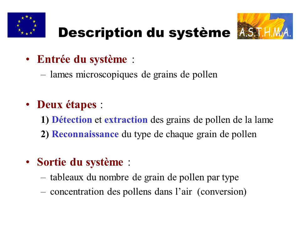 Description du système Entrée du système : –lames microscopiques de grains de pollen Deux étapes : 1) Détection et extraction des grains de pollen de la lame 2) Reconnaissance du type de chaque grain de pollen Sortie du système : –tableaux du nombre de grain de pollen par type –concentration des pollens dans lair (conversion)