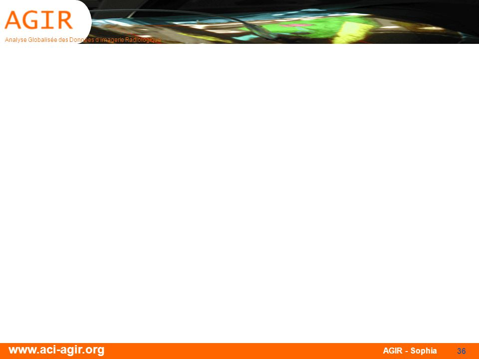 Analyse Globalisée des Données dImagerie Radiologique www.aci-agir.org AGIR - Sophia 36