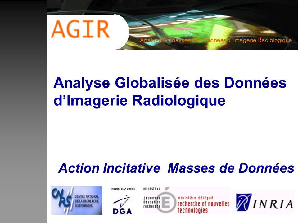 Analuse Globalisée des Données d Imagerie Radiologique Analyse Globalisée des Données dImagerie Radiologique Action Incitative Masses de Données