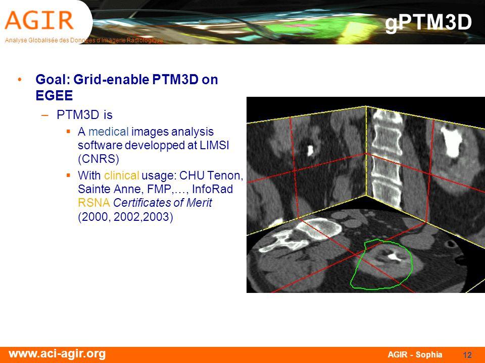 Analyse Globalisée des Données dImagerie Radiologique www.aci-agir.org AGIR - Sophia 12 gPTM3D Goal: Grid-enable PTM3D on EGEE –PTM3D is A medical ima