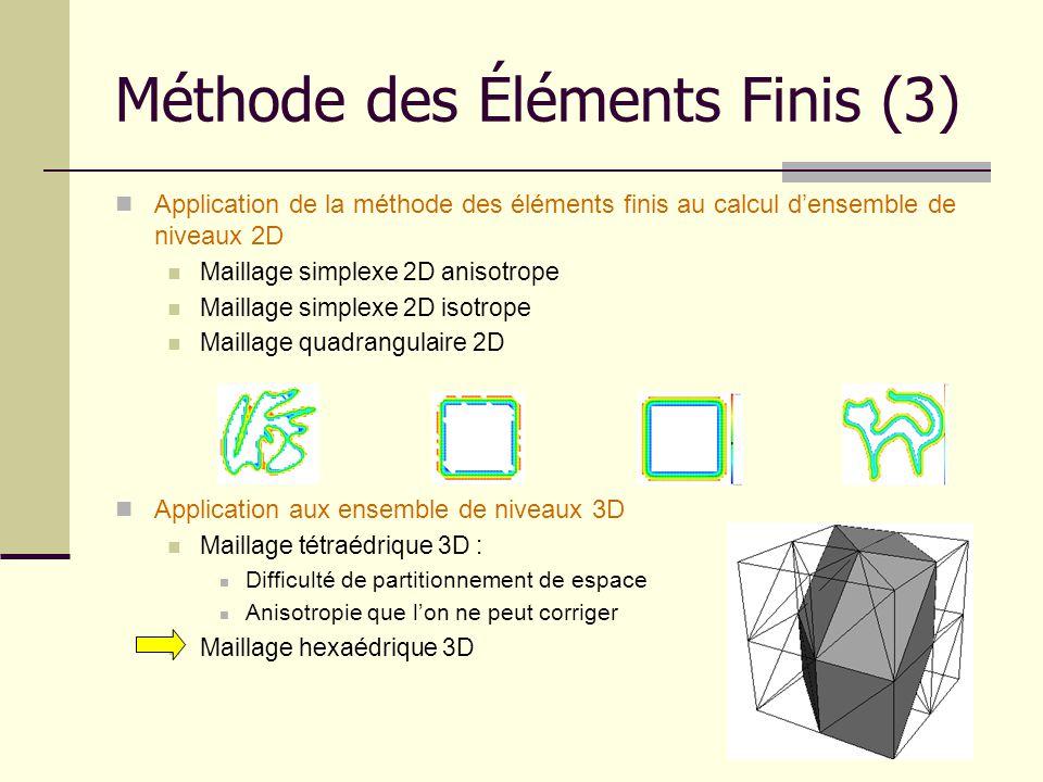 Méthode des Éléments Finis (3) Application de la méthode des éléments finis au calcul densemble de niveaux 2D Maillage simplexe 2D anisotrope Maillage