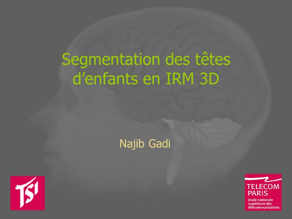 Segmentation des têtes denfants en IRM 3D Najib Gadi