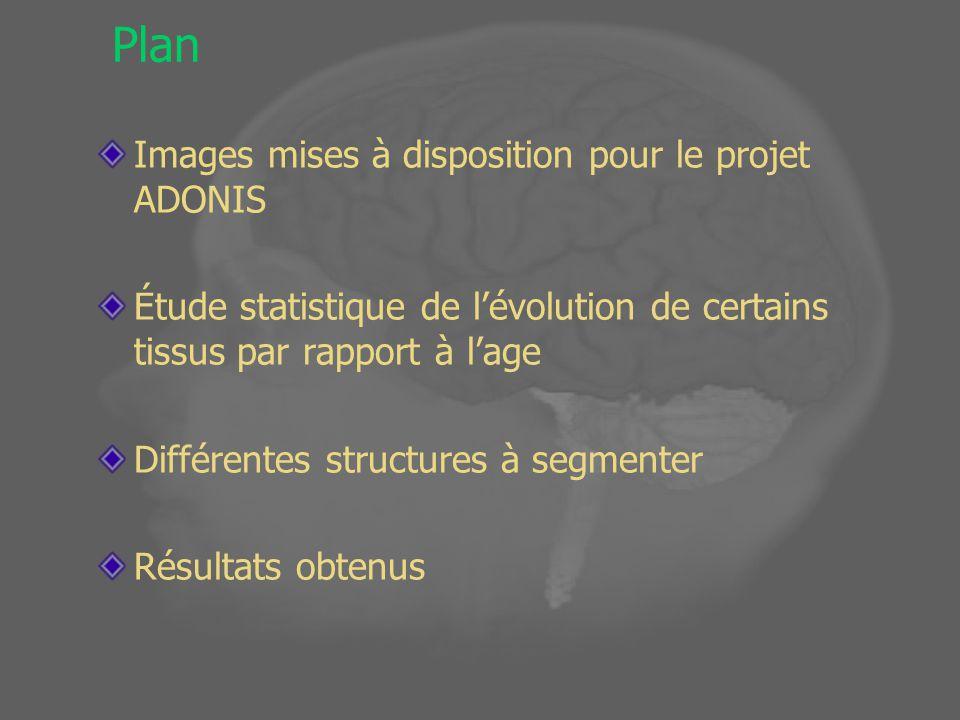 Plan Images mises à disposition pour le projet ADONIS Étude statistique de lévolution de certains tissus par rapport à lage Différentes structures à segmenter Résultats obtenus