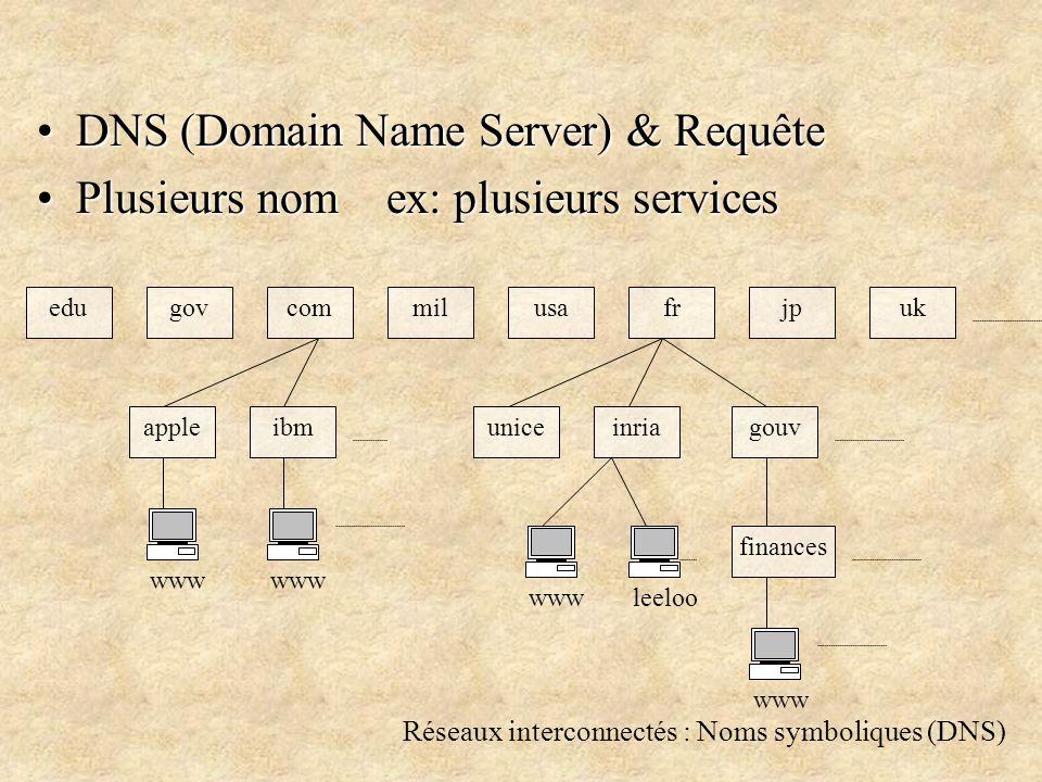 Réseaux interconnectés : Noms symboliques (DNS) DNS (Domain Name Server) & RequêteDNS (Domain Name Server) & Requête Plusieurs nom ex: plusieurs servicesPlusieurs nom ex: plusieurs services edugovcommilusafrjpuk gouv finances inriauniceibmapple www leeloo www