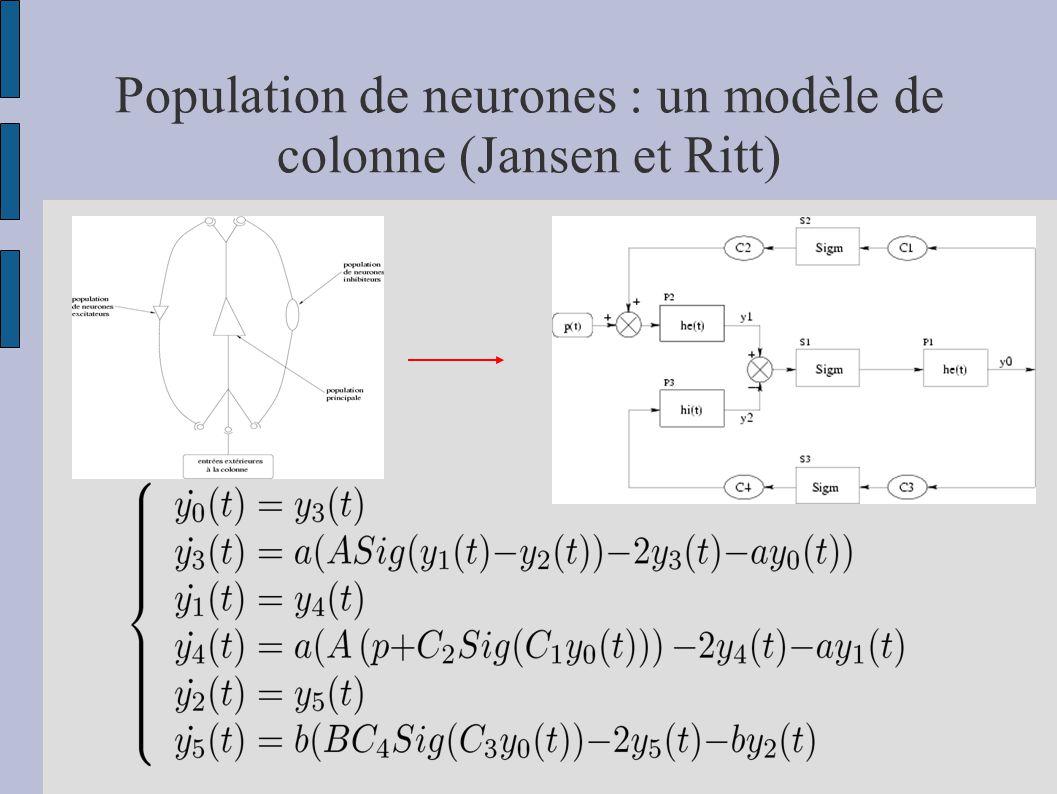 Population de neurones : un modèle de colonne (Jansen et Ritt)