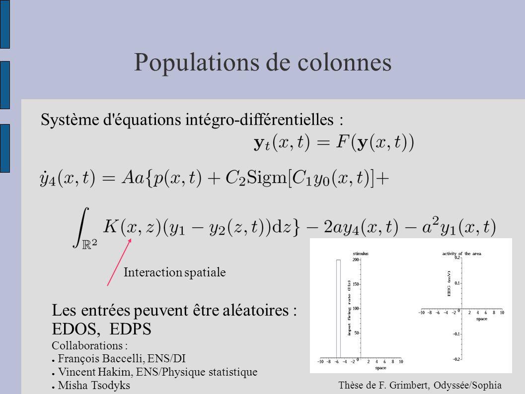 Populations de colonnes Système d'équations intégro-différentielles : Interaction spatiale Les entrées peuvent être aléatoires : EDOS, EDPS Collaborat