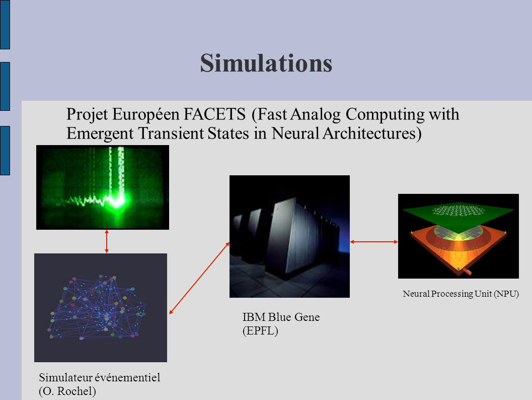 Simulations Projet Européen FACETS (Fast Analog Computing with Emergent Transient States in Neural Architectures) Simulateur événementiel (O.