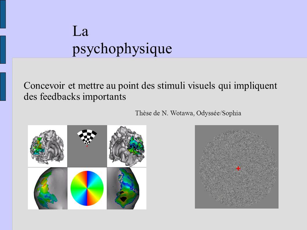La psychophysique Concevoir et mettre au point des stimuli visuels qui impliquent des feedbacks importants Thèse de N. Wotawa, Odyssée/Sophia