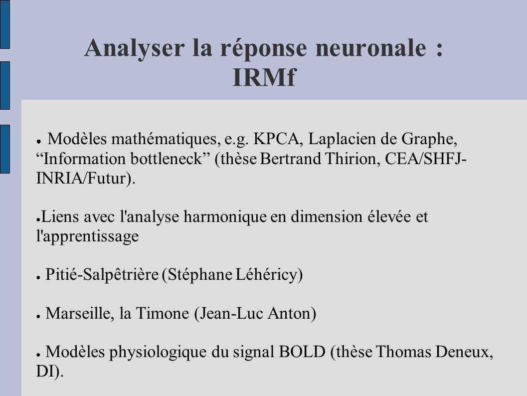 Analyser la réponse neuronale : IRMf Modèles mathématiques, e.g. KPCA, Laplacien de Graphe, Information bottleneck (thèse Bertrand Thirion, CEA/SHFJ-