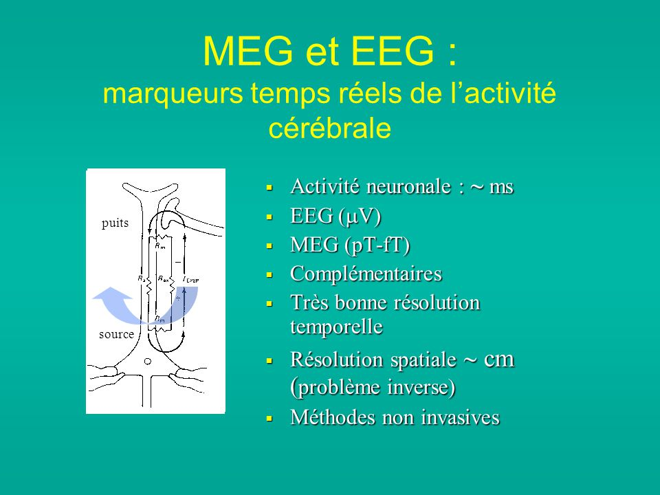 MEG et EEG : marqueurs temps réels de lactivité cérébrale Activité neuronale : ms Activité neuronale : ms EEG ( V) EEG ( V) MEG (pT-fT) MEG (pT-fT) Complémentaires Complémentaires Très bonne résolution temporelle Très bonne résolution temporelle Résolution spatiale cm ( problème inverse) Résolution spatiale cm ( problème inverse) Méthodes non invasives Méthodes non invasives sink source puits source