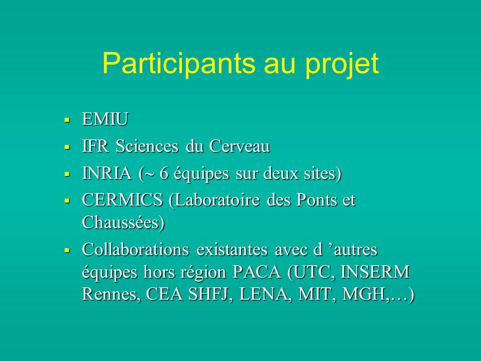 Participants au projet EMIU EMIU IFR Sciences du Cerveau IFR Sciences du Cerveau INRIA ( 6 équipes sur deux sites) INRIA ( 6 équipes sur deux sites) CERMICS (Laboratoire des Ponts et Chaussées) CERMICS (Laboratoire des Ponts et Chaussées) Collaborations existantes avec d autres équipes hors région PACA (UTC, INSERM Rennes, CEA SHFJ, LENA, MIT, MGH,…) Collaborations existantes avec d autres équipes hors région PACA (UTC, INSERM Rennes, CEA SHFJ, LENA, MIT, MGH,…)