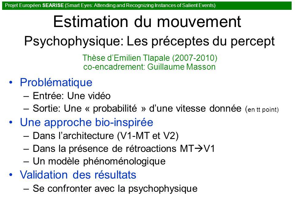 Estimation du mouvement Psychophysique: Les préceptes du percept Thèse dEmilien Tlapale (2007-2010) co-encadrement: Guillaume Masson Projet Européen SEARISE (Smart Eyes: Attending and Recognizing Instances of Salient Events) Problématique –Entrée: Une vidéo –Sortie: Une « probabilité » dune vitesse donnée ( en tt point) Une approche bio-inspirée –Dans larchitecture (V1-MT et V2) –Dans la présence de rétroactions MT V1 –Un modèle phénoménologique Validation des résultats –Se confronter avec la psychophysique