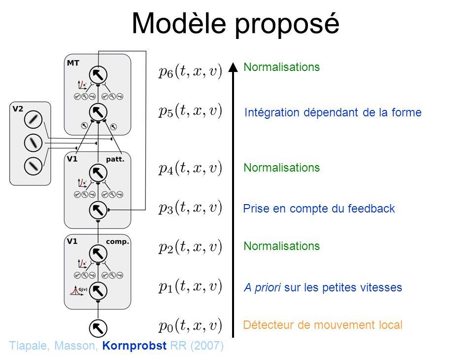 Modèle proposé Tlapale, Masson, Kornprobst RR (2007) Détecteur de mouvement local Normalisations A priori sur les petites vitesses Normalisations Intégration dépendant de la forme Prise en compte du feedback