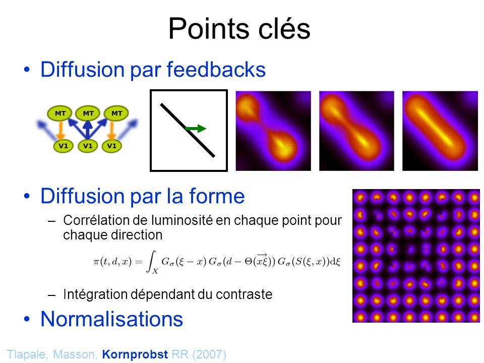 Diffusion par feedbacks Diffusion par la forme –Corrélation de luminosité en chaque point pour chaque direction –Intégration dépendant du contraste Normalisations Points clés Tlapale, Masson, Kornprobst RR (2007)
