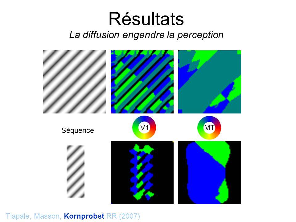Résultats La diffusion engendre la perception Tlapale, Masson, Kornprobst RR (2007) Séquence V1 MT