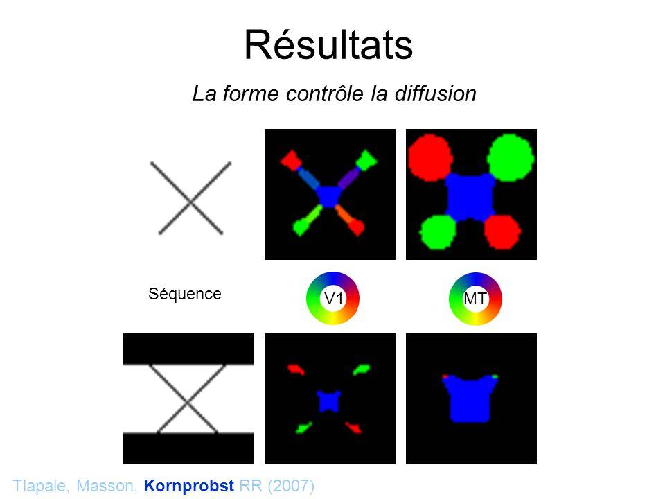 Séquence Tlapale, Masson, Kornprobst RR (2007) Résultats La forme contrôle la diffusion V1 MT