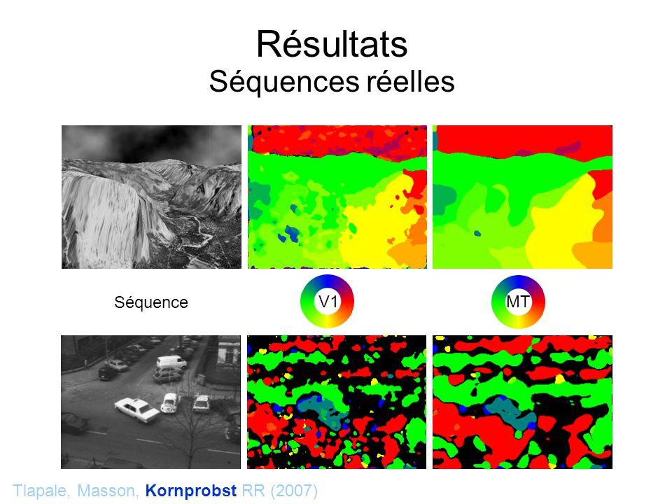 Tlapale, Masson, Kornprobst RR (2007) Résultats Séquences réelles V1 MT Séquence