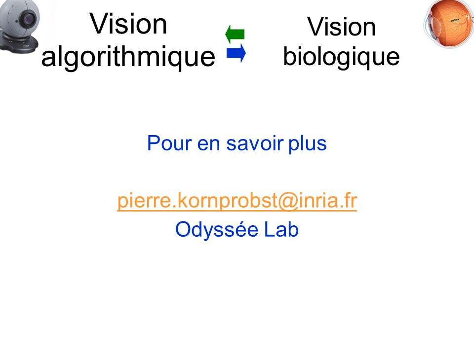 Pour en savoir plus pierre.kornprobst@inria.fr Odyssée Lab Vision biologique Vision algorithmique