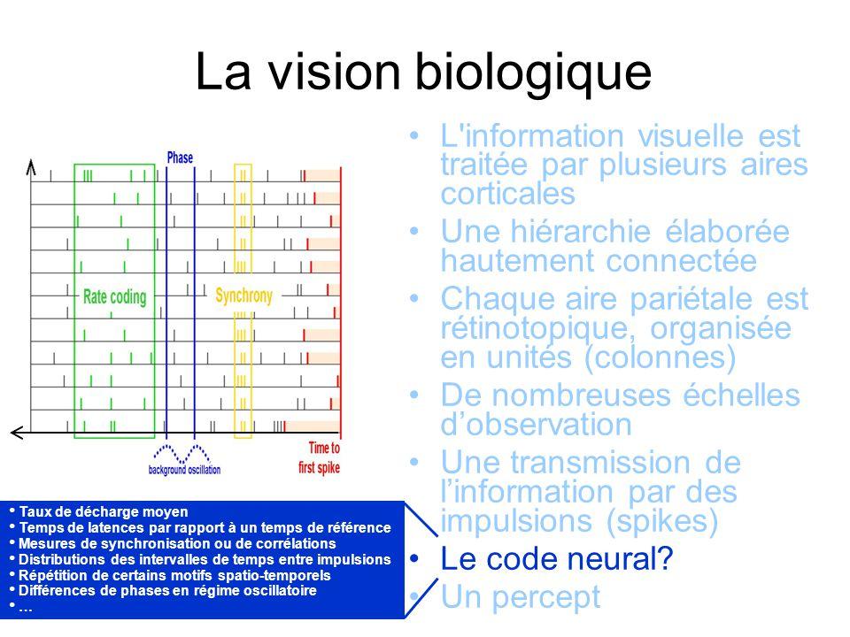 Des modèles bio-inspirés existent Modèles sans rétroaction –Simoncelli, Heeger (1998): linéaire/non-linéaire Modèles avec rétroaction et intervention de la forme –Grossberg etal (2007): 15 équations, grand nombre de paramètres, des images binaires en entrée –Bayerl, Neumann (2007): Détecteurs de jonctions qui inhibent toute diffusion –Tlapale, Masson, Kornprobst (2007): Utiliser la forme et les jonctions pour mieux diffuser, des cas réels
