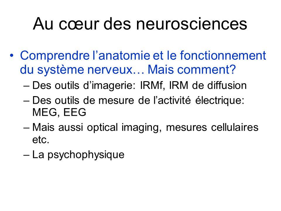 Au cœur des neurosciences Comprendre lanatomie et le fonctionnement du système nerveux… Mais comment.