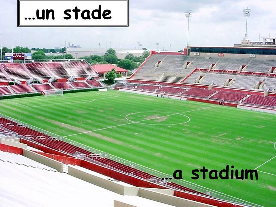…a stadium …un stade