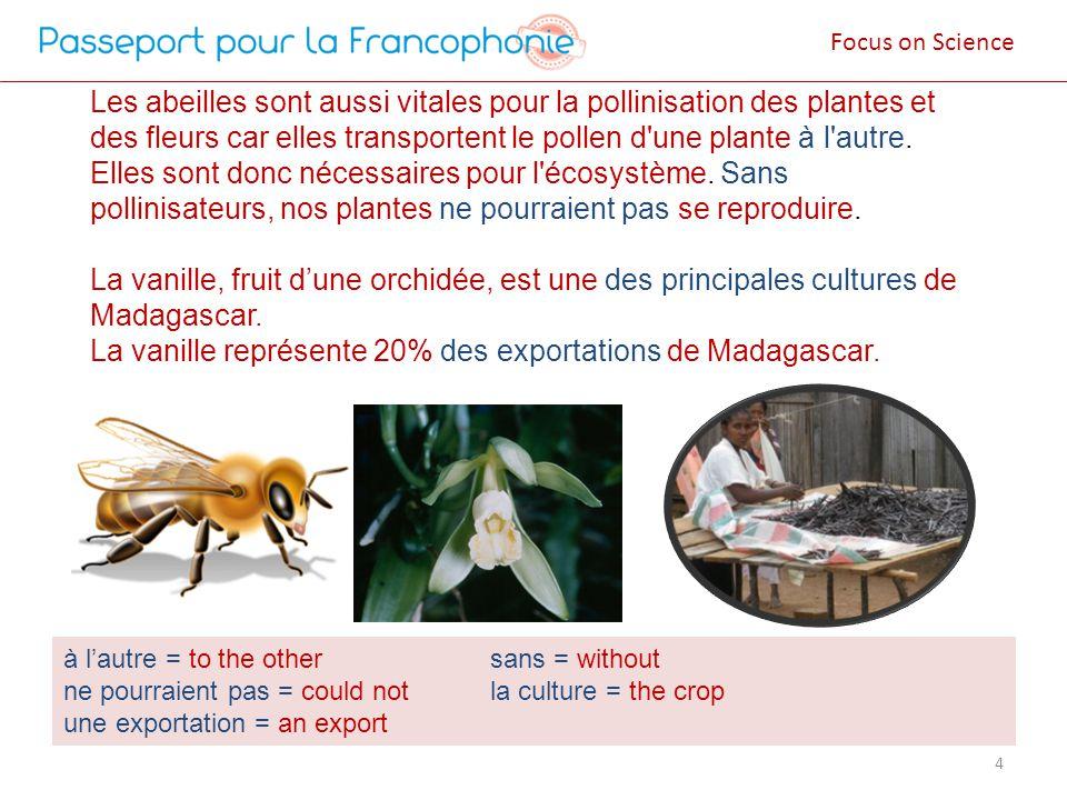 Les abeilles sont aussi vitales pour la pollinisation des plantes et des fleurs car elles transportent le pollen d une plante à l autre.