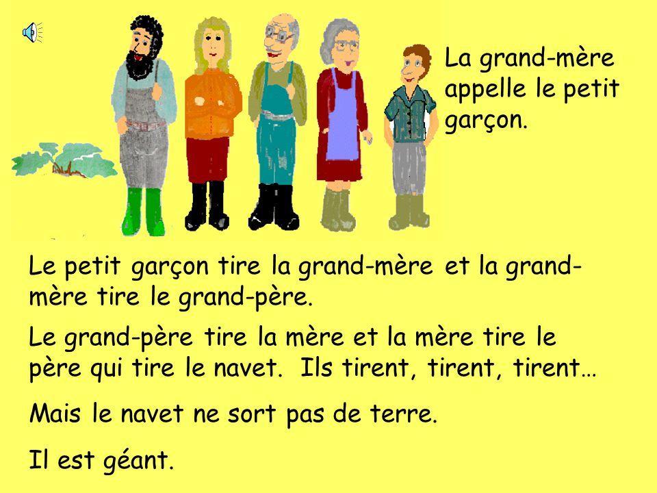 Le grand-père appelle la grand-mère. La grand-mère tire le grand-père. Le grand-père tire la mère. La mère tire le père qui tire le navet. Ils tirent,