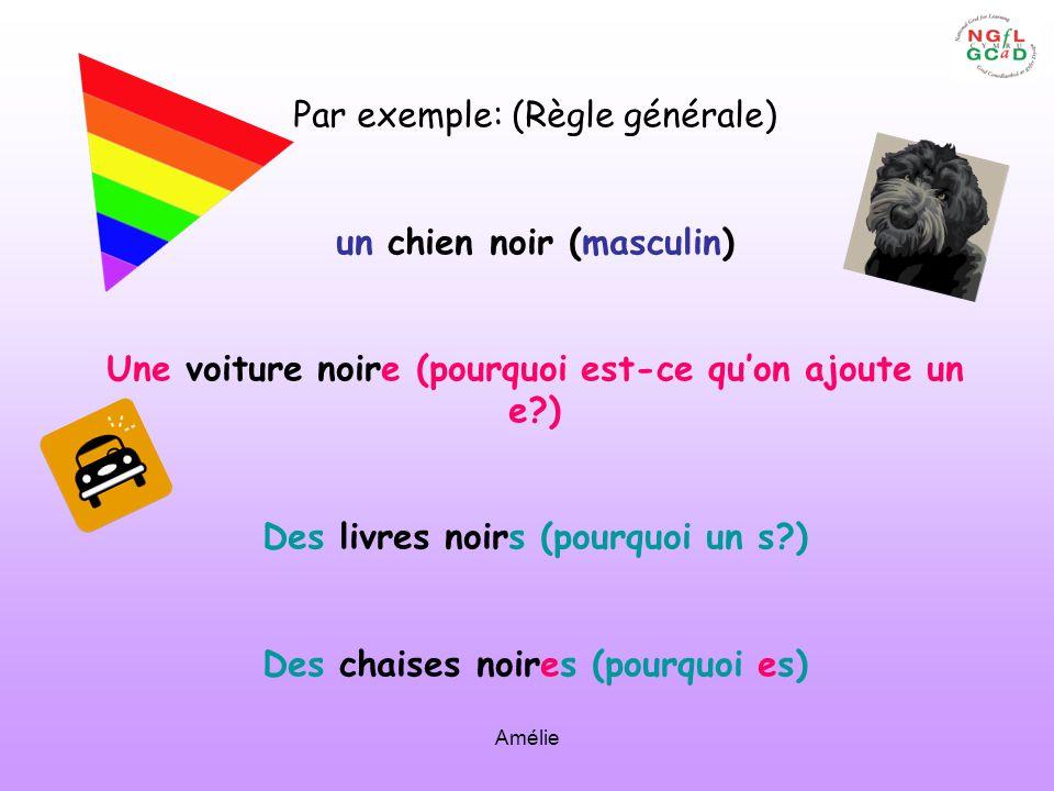 Amélie Par exemple: (Règle générale) un chien noir (masculin) Une voiture noire (pourquoi est-ce quon ajoute un e?) Des livres noirs (pourquoi un s?)