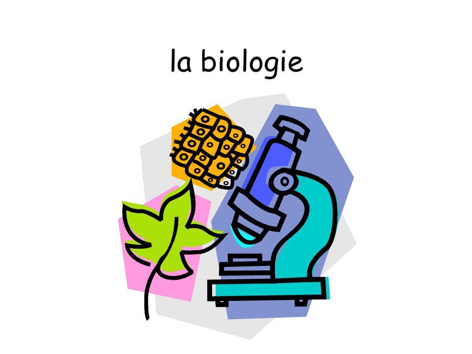 Les matières la musique-Music la chimie-Chemistry la biologie-Biology la physique-Physics la géographie-Geography la cuisine-Food Technology la couture-Textiles la religion-R.E.