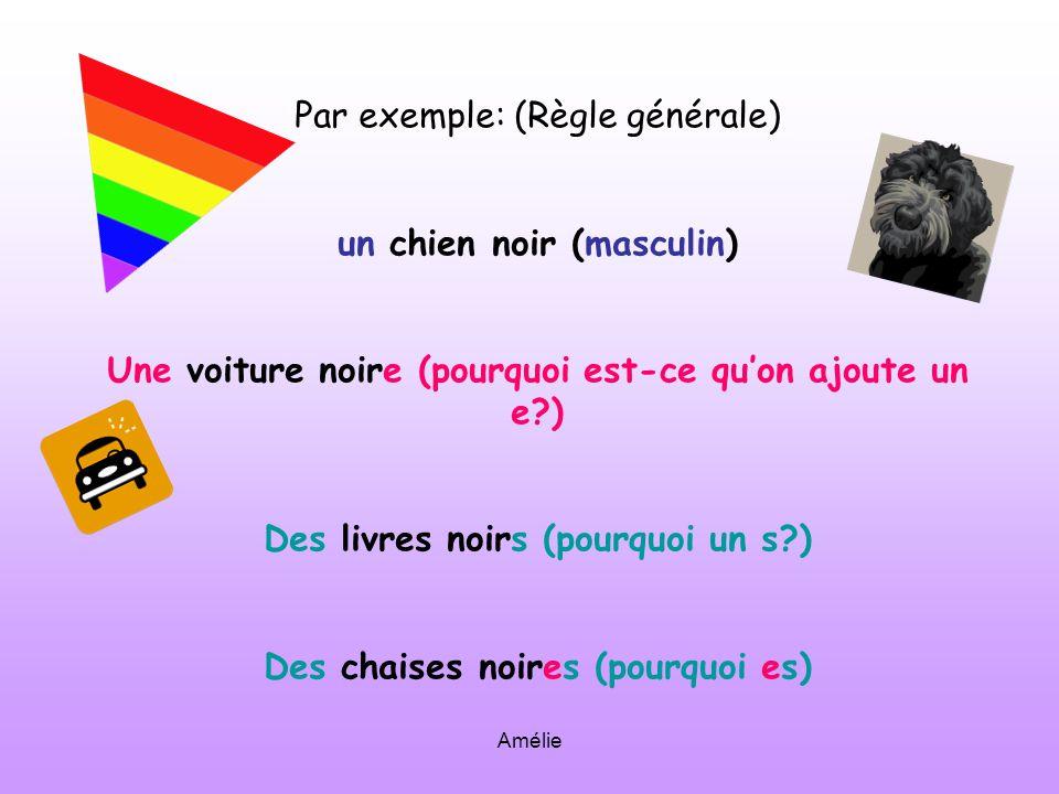 Amélie Par exemple: (Règle générale) un chien noir (masculin) Une voiture noire (pourquoi est-ce quon ajoute un e?) Des livres noirs (pourquoi un s?) Des chaises noires (pourquoi es)