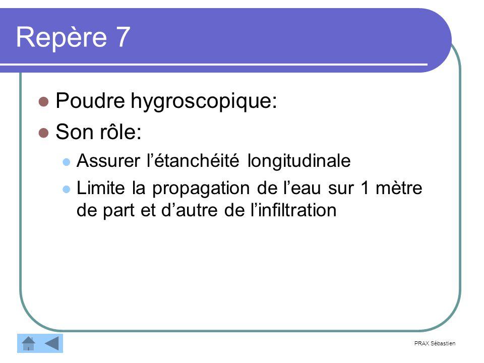 Repère 7 Poudre hygroscopique: Son rôle: Assurer létanchéité longitudinale Limite la propagation de leau sur 1 mètre de part et dautre de linfiltration PRAX Sébastien