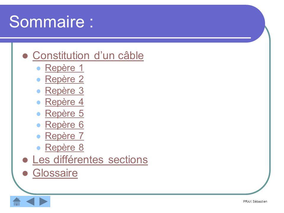 Sommaire : Constitution dun câble Repère 1 Repère 2 Repère 3 Repère 4 Repère 5 Repère 6 Repère 7 Repère 8 Les différentes sections Glossaire PRAX Sébastien