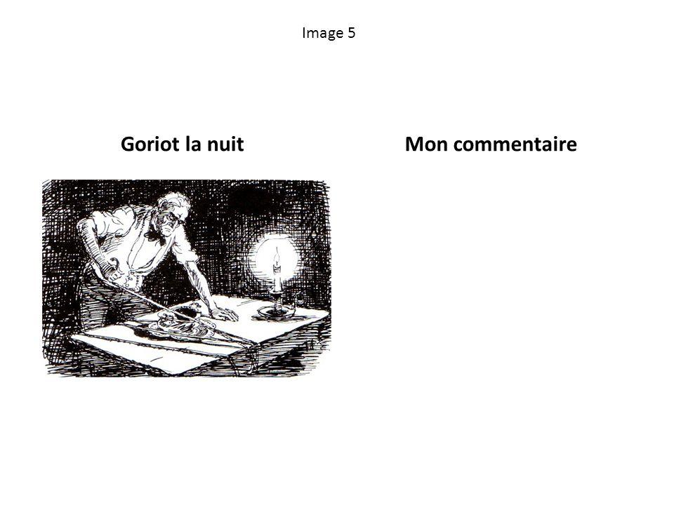 Image 5 Goriot la nuitMon commentaire