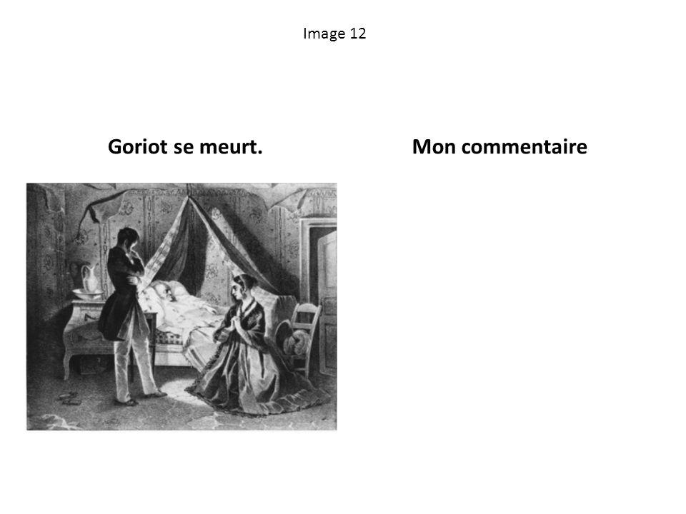 Image 12 Goriot se meurt.Mon commentaire