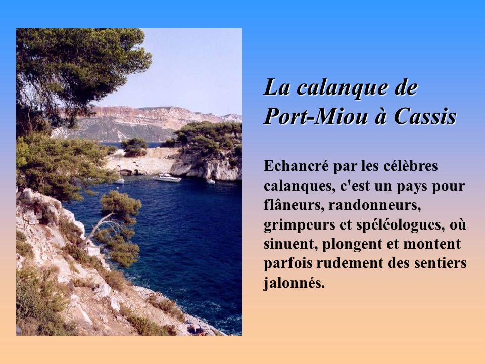 massifs de Marseilleveyre et de Puget De l'extrême sud de Marseille, jusqu'à Cassis, le relief marin des massifs de Marseilleveyre et de Puget est tou
