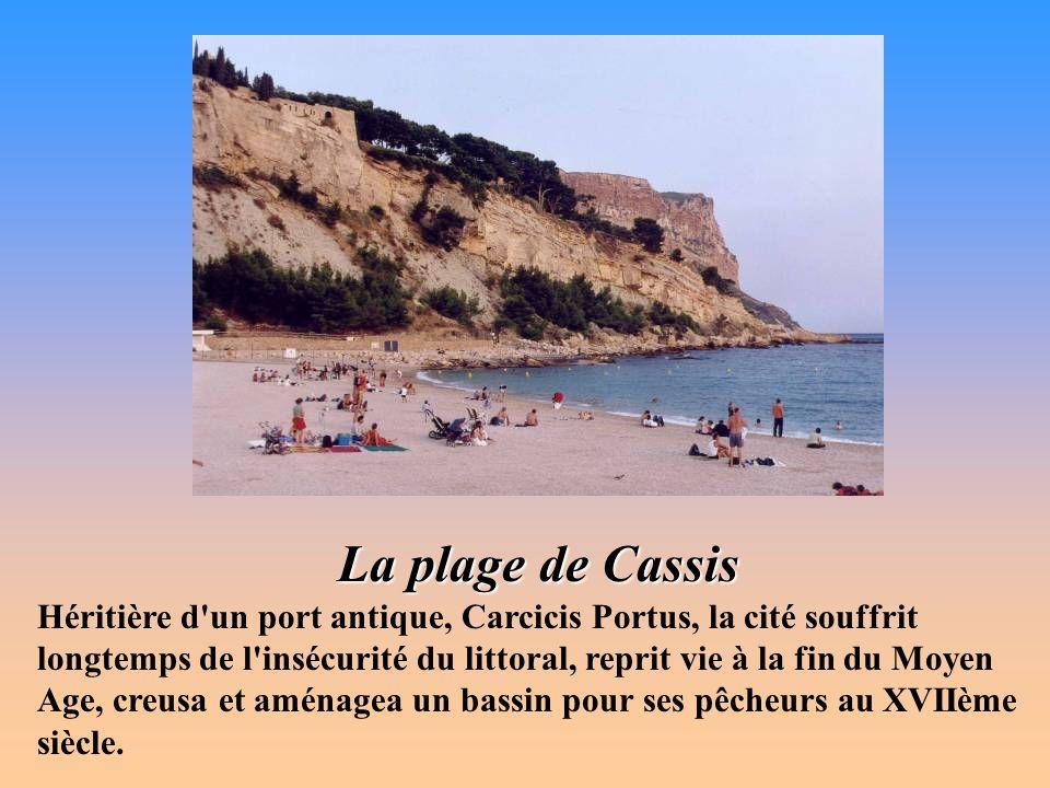 La calanque de Port-Miou à Cassis Echancré par les célèbres calanques, c est un pays pour flâneurs, randonneurs, grimpeurs et spéléologues, où sinuent, plongent et montent parfois rudement des sentiers jalonnés.
