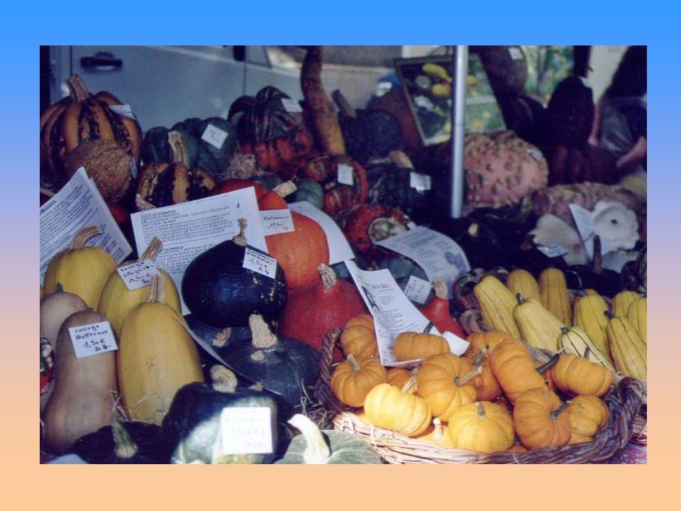 Un marché provençal La riche et diverse cuisine provençale chante de toutes ses saveurs, de toutes ses couleurs : une musique pour les papilles.