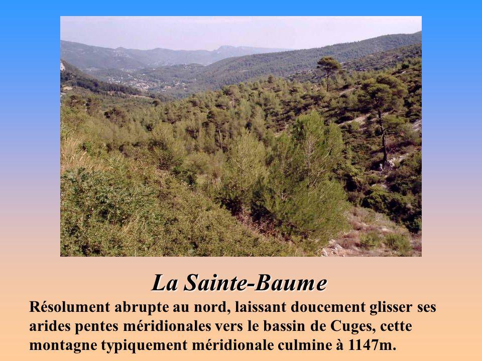 Massif de la Sainte-Baume Nom poétiquement évocateur de la basse Provence, la Sainte-Baume désigne le long massif dont la crête calcaire commande de f